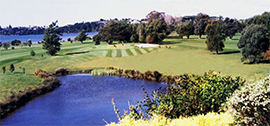 Omokoroa golf course